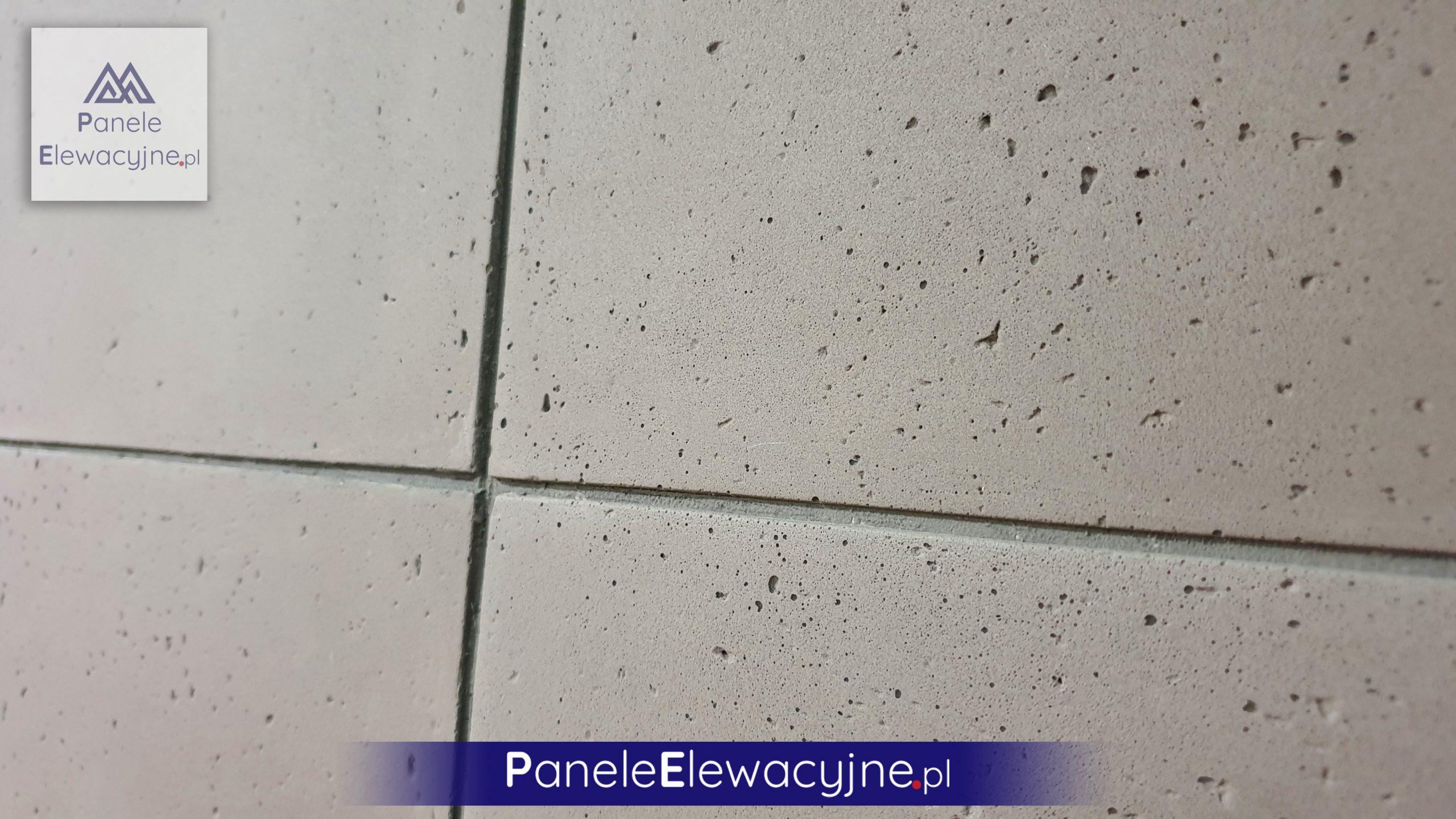 panele elewacyjne31